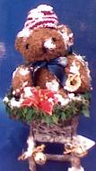 bear in sleigh